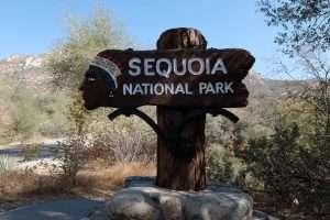 Sequoia national park entrance