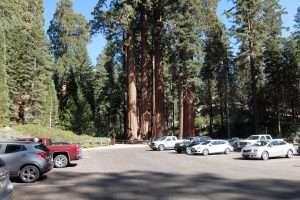 Sequoia national park il parcheggio