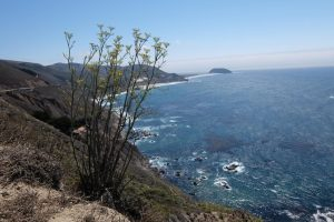 California linea costiera