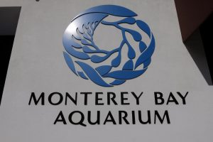 Monterey acquario California