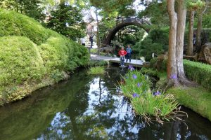 Golden Gate park giardino giapponese ponte tondo