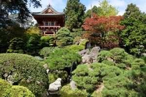 Golden Gate park giardino giapponese