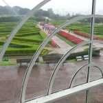 CURITIBA giardino botanico brasile cosa vedere