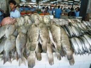 Deira mercato del pesce
