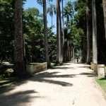 RIO DE JANEIRO NATURA GALLERY