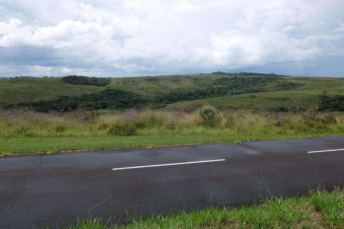 paesaggio brasiliano