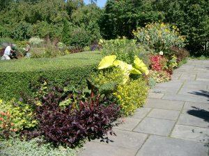 Conservatory garden viale
