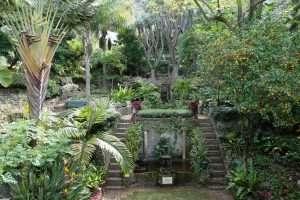 Alameda Botanical Gardens