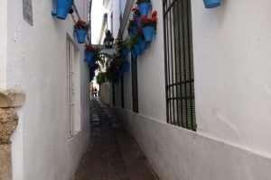 Calle de las Flores Cordova