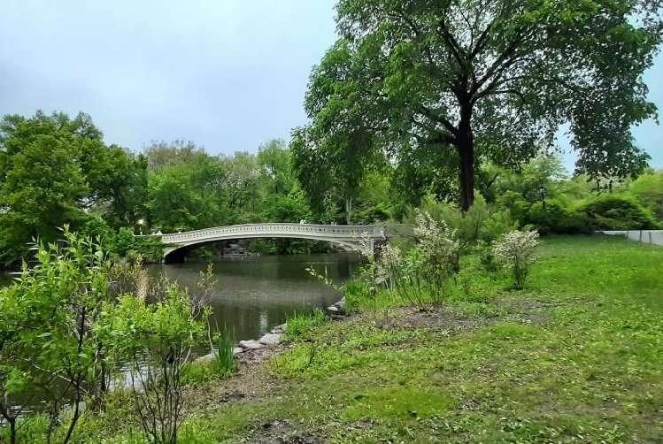 Central Park Bow Bridge New York