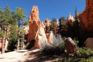 Bryce Canyon Queens' Garden