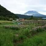 MONTE FUJI COSA FARE e 5 laghi Giappone