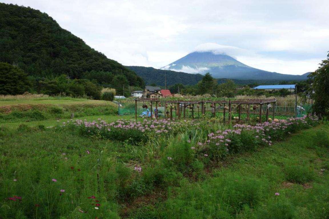 Monte Fuji e 5 laghi cosa fare