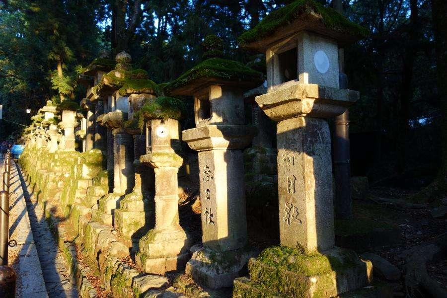 Lanterne in pietra a Nara