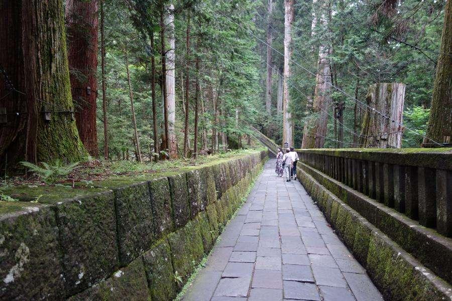Nikko Tosho-gu santuario sentiero nel bosco