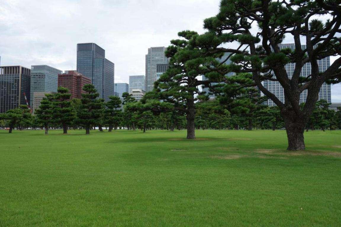 Tokyo cosa vedere due giorni