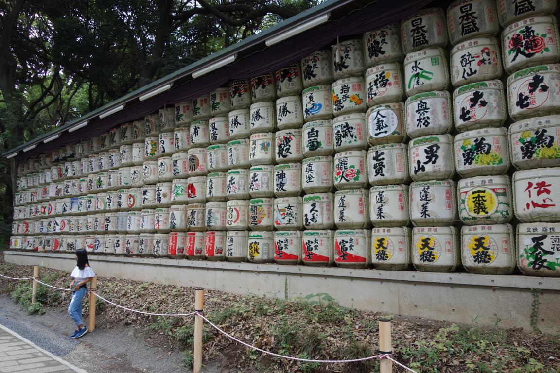 Meiji jingu cosa vedere Tokyo