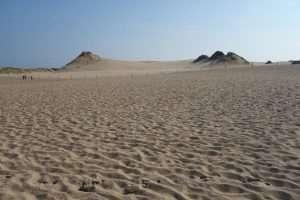 Dune dello Slowinski Park