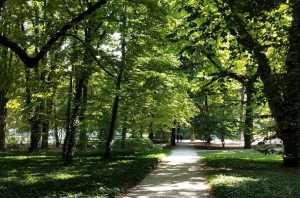 VIali del Parco Lazienki Varsavia