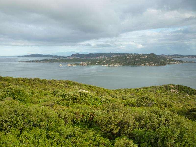 Vista sulla Maddalena Sardegna cosa vedere in viaggio