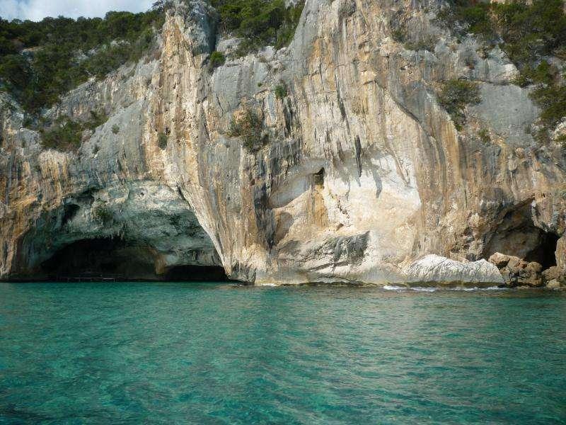 Grotta del bue marino Golfo di Orosei cosa vedere in Sardegna