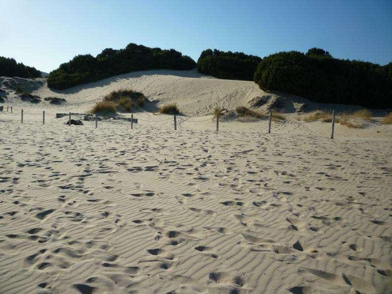 Chia spiaggia Sardegna in camper