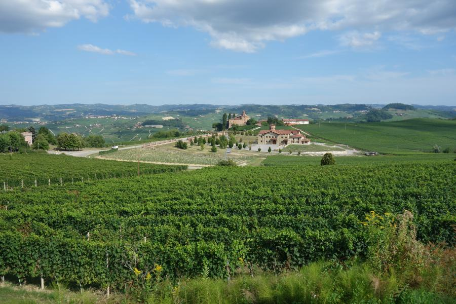 Langhe in Piemonte
