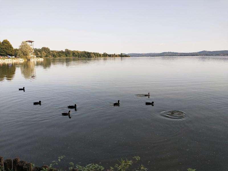 Lago di Varese Lombardia