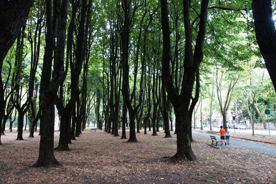 Parco di Monza Lombardia
